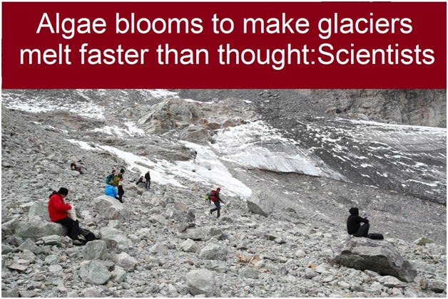 ias-coaching-centres-bangalore-hyderabad-pragnya-ias-academy-current-affairs-Algae-glaciers-Scientists