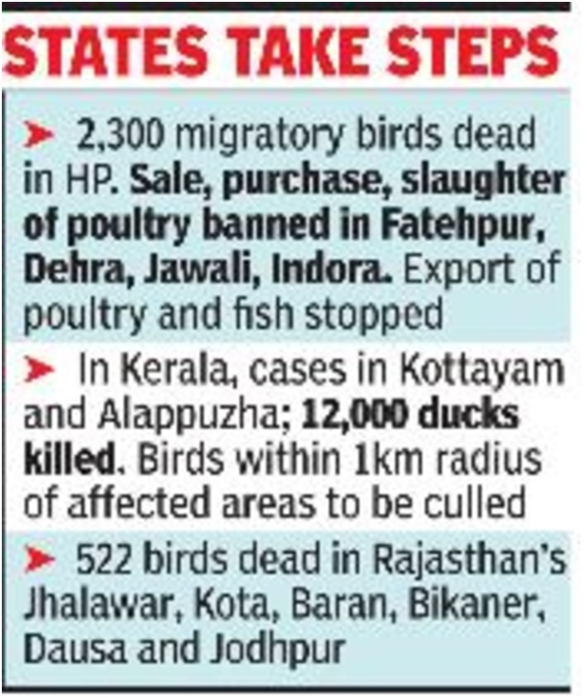 ias-coaching-centres-bangalore-hyderabad-pragnya-ias-academy-current-affairs-Bird-flu-guidelines