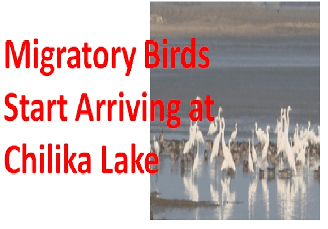 ias-coaching-centres-bangalore-hyderabad-pragnya-ias-academy-current-affairs-Chilika-migratory-bird